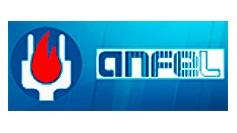 Anfel logo