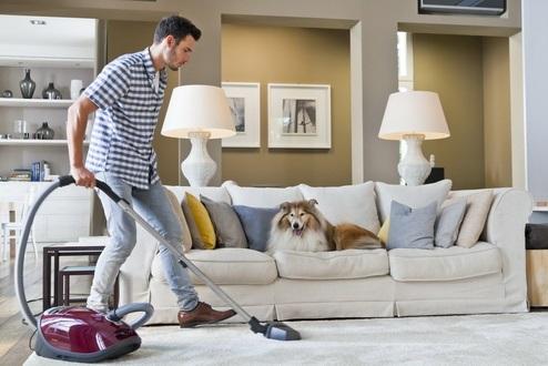 Miele Cat&Dog, un aspirador para hogares con mascotas